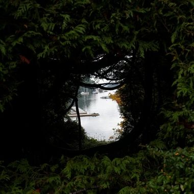 I've been to Butchart Gardens a few times.  An overcast day presented the opportunity to photograph the bay through the hedge without something being over or under exposed.