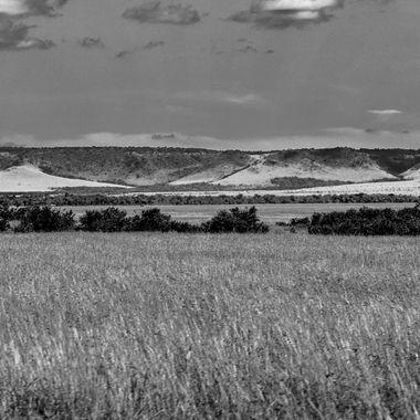 Escarpment and Grass in B nd W