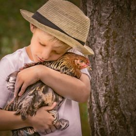 Young boy and his pet rooster