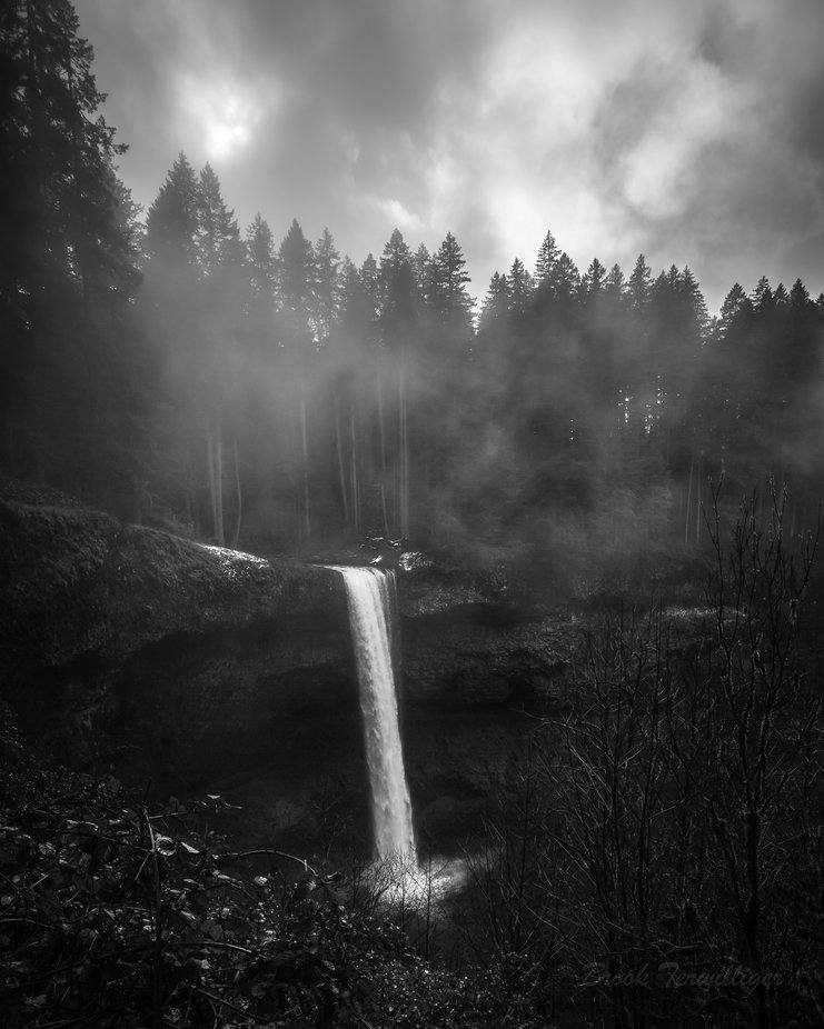 Silver Falls, Oregon by BrookTerwilliger - The Natural Planet Photo Contest