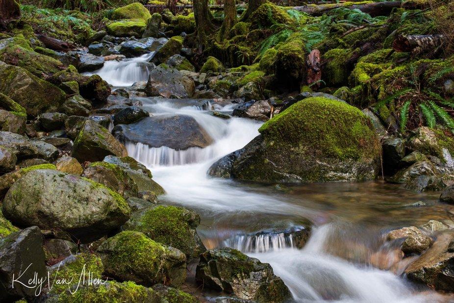 Mt. Baker Creek