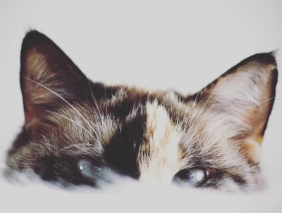 I watch you while you sleep