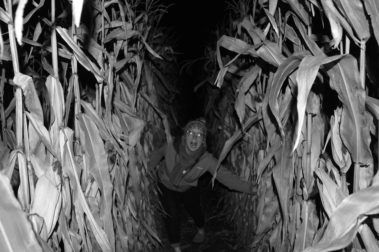 I think this one is just fun.  I my self am scarred for life from that movie, Children of the Corn but since all the stalks were dead I decided to risk it.