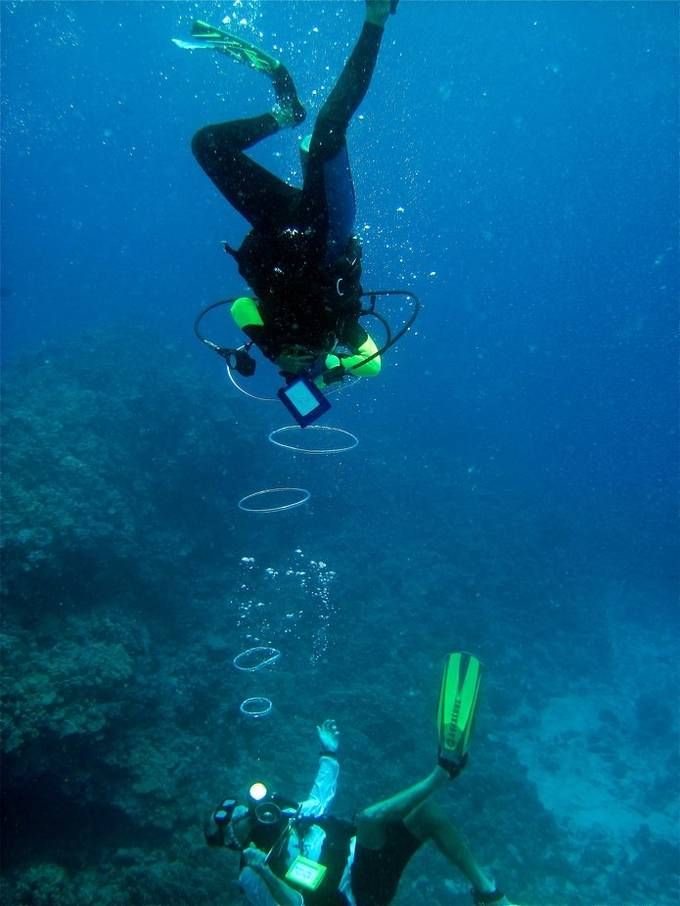 When I went scuba diving in Kona, one of the film guys was showing us how to make rings underwater and our instructor swam through them.  It was really cool to see them start out small and then get bigger on their own the further they traveled from you.