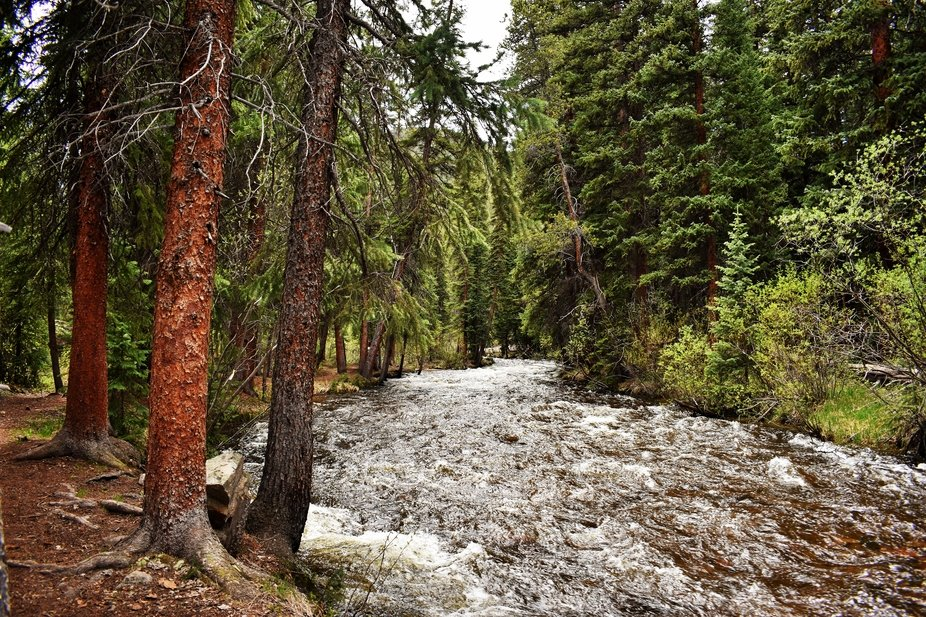 I took this photo in chalk creek Colorado last summer, it was so peaceful to be listen to the rus...
