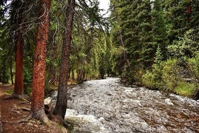 Chalk Creek Colorado