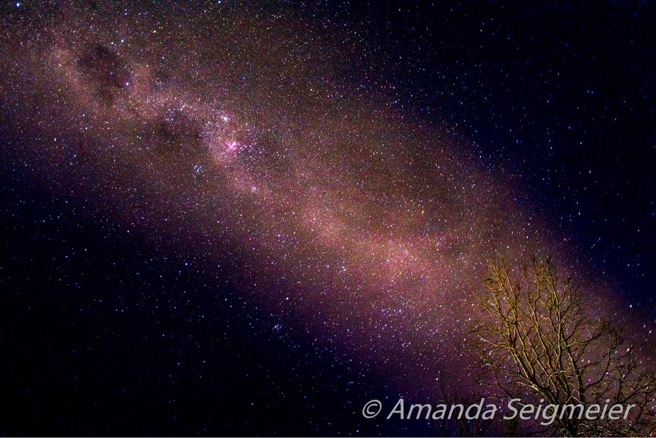 Milky Way with a light painted tree near Maitland, NSW, Australia.