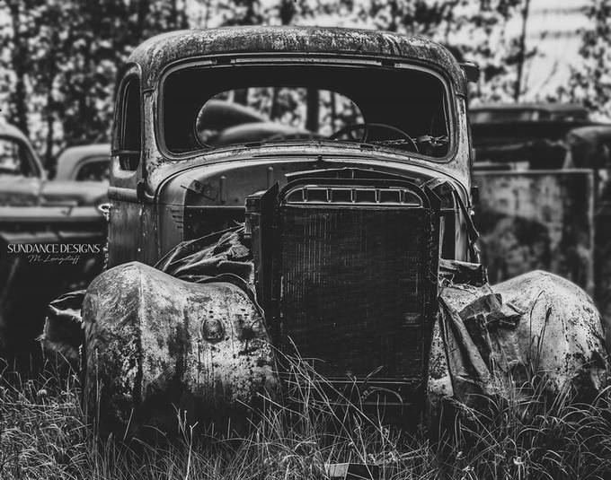 Left for dead by SundanceDesigns - Our World In Black And White Photo Contest