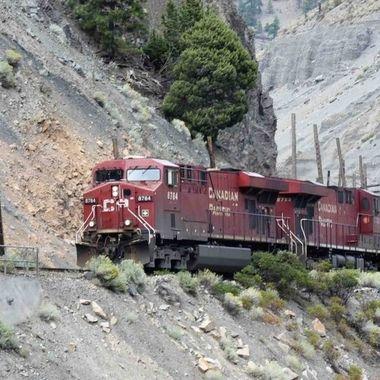 SB_31772413 Train