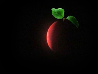 Blood Moon plus a little imagination. 20x zoom. Photo 2.
