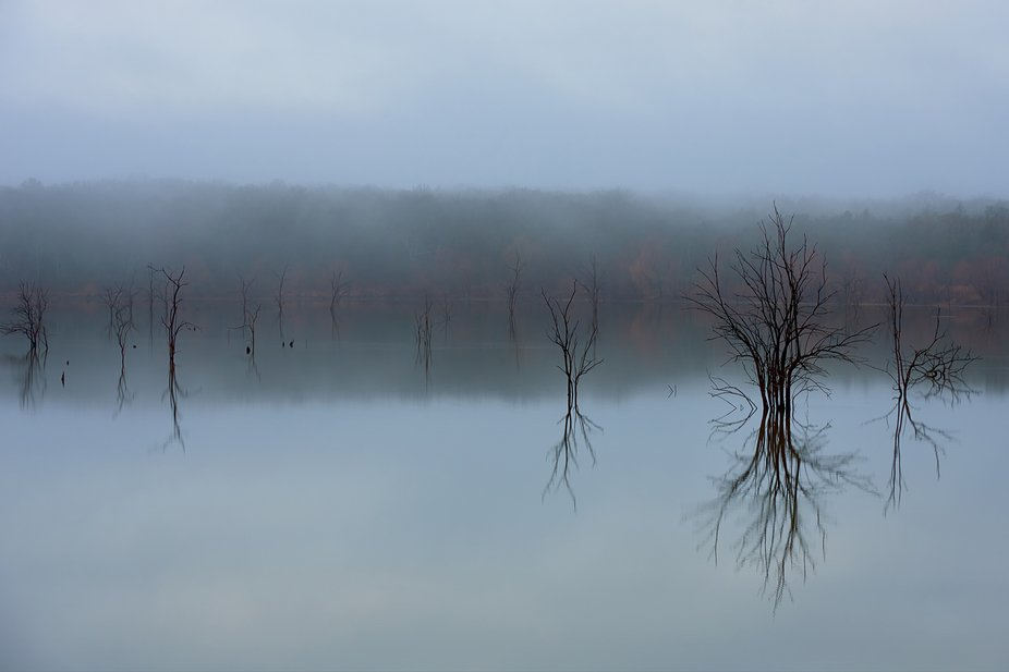 On the last day of fall North Texas experienced a morning where the fog rolled in so heavy that v...