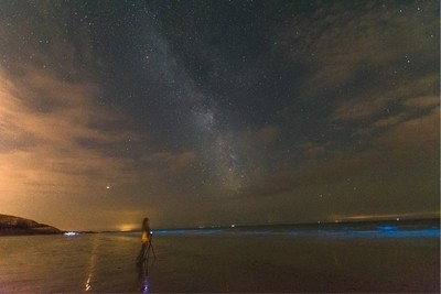 bioluminescent plankton And the milkyway in wales