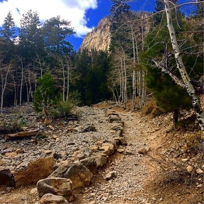 Who knew there was a forest in the desert. MT Charleston is one of my favorite lasvegas hiking destinations.