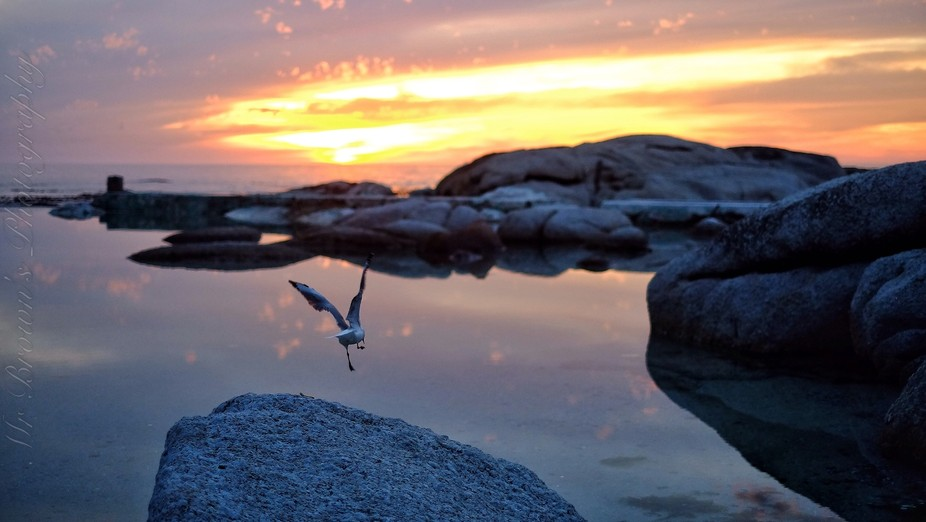 Amazing location in Camps Bay Capetown South Africa beautiful reflections and sunsets and nature