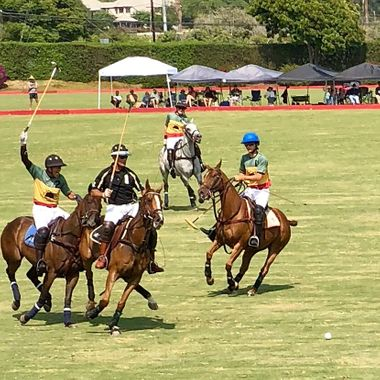 Polo in Santa Barbara, CA!