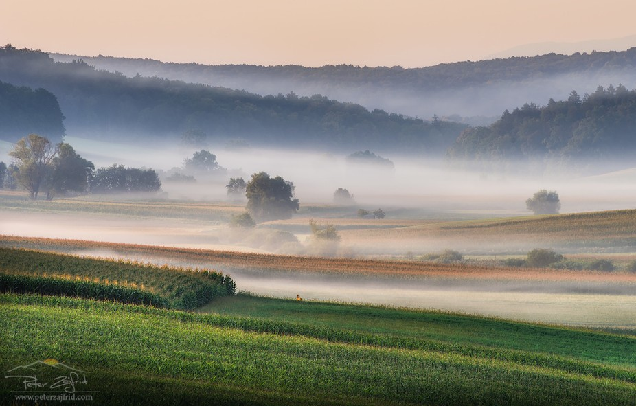 Foggy morning in Jurovski Dol, Slovenia