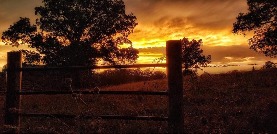 Missouri Farm Sunset