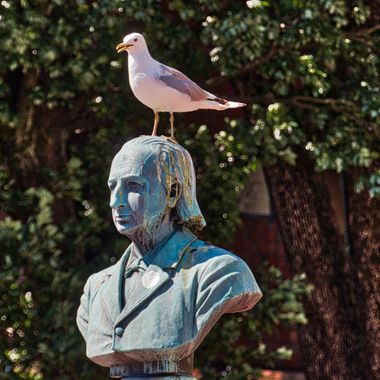 I took this photo when me and my wife went on a boat trip to Norway, in July 2018. When we were walking around in Kristiansand, I saw this seagull standing on the head of this statue. This was the result.