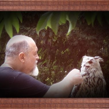 Thanks to such breeders who bring the owls back into nature, the owl species in our regions are not yet extinct. Here you see Albert and his Owl