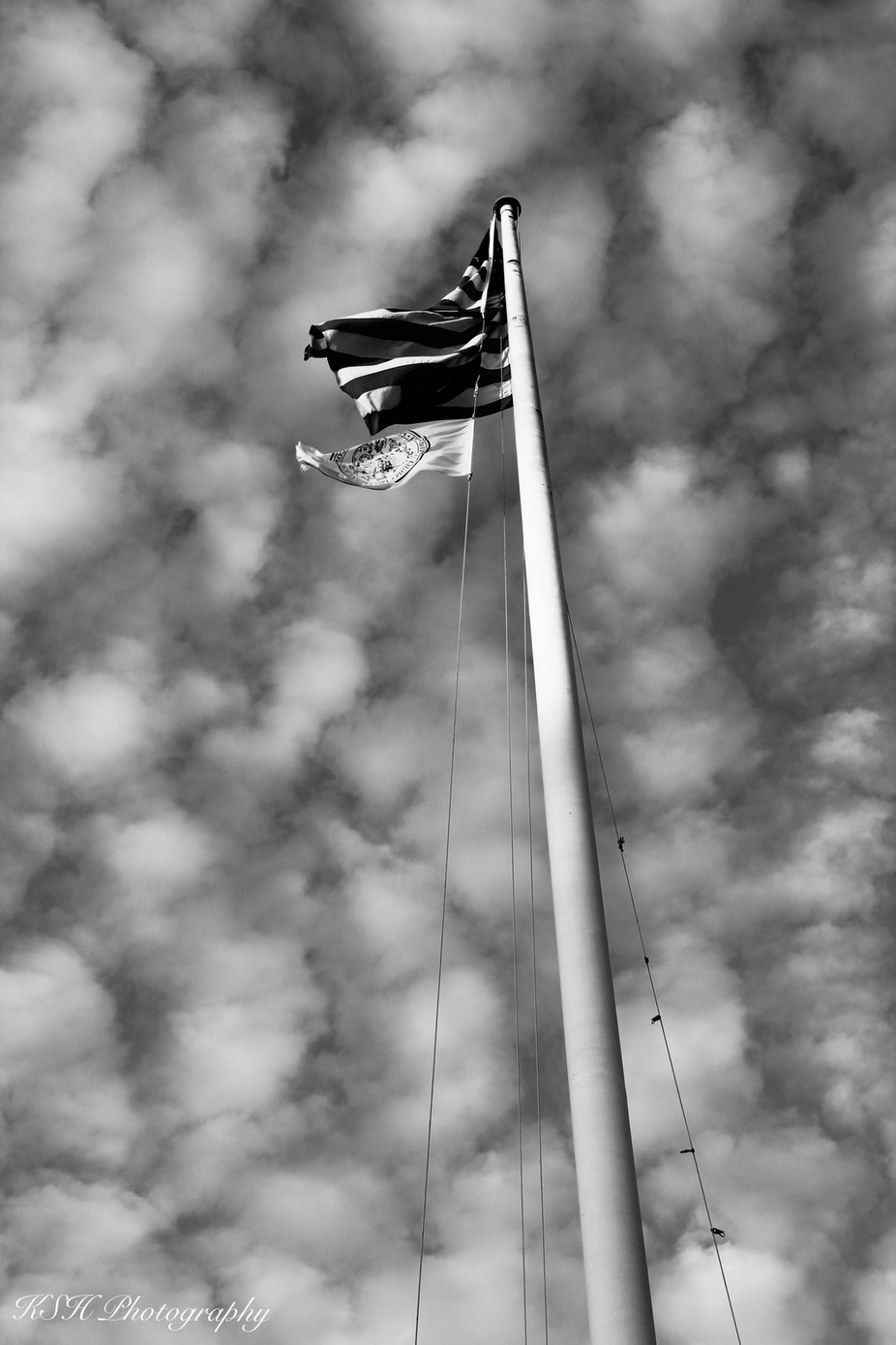 Freedom is calling. To not just us, to everyone!  by kalahhendricks - Flags and Banners Photo Contest
