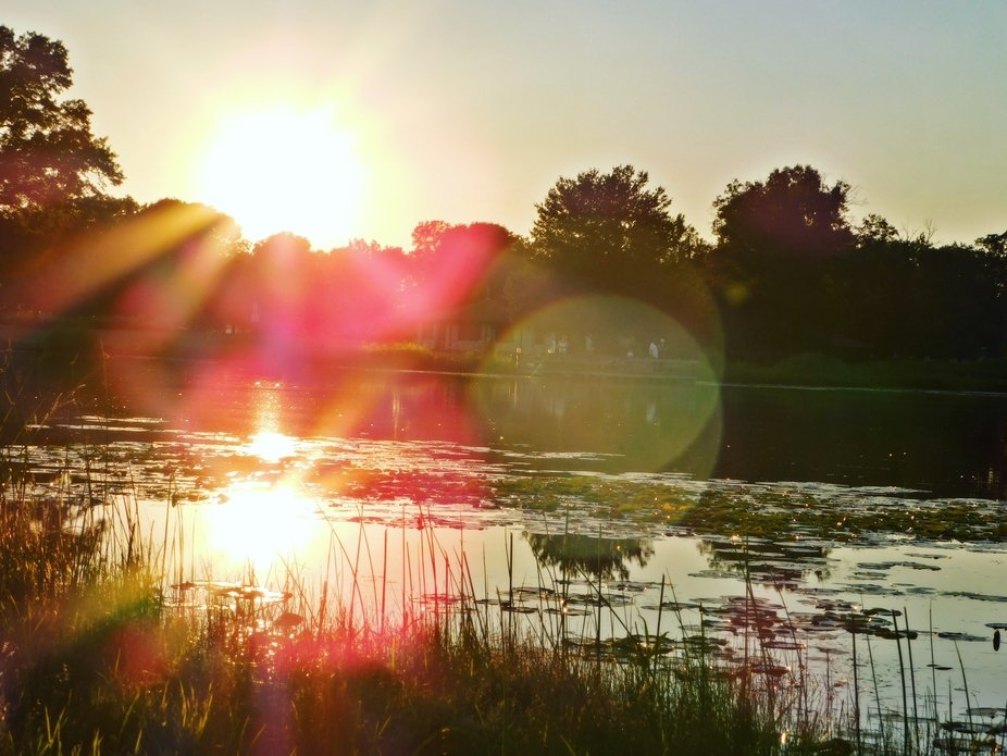Sundown over pond