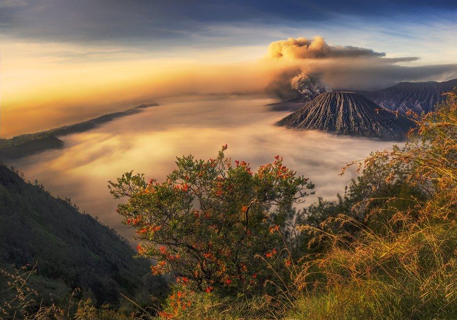 Beautiful sunrise of Mount Bromo, Indonesia.