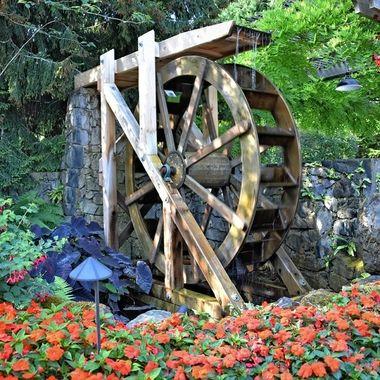 Buchart Gardens (2) Victoria, British Columbia - Canada