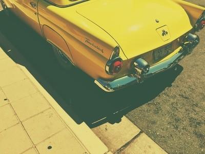 Yellow Thunderbird