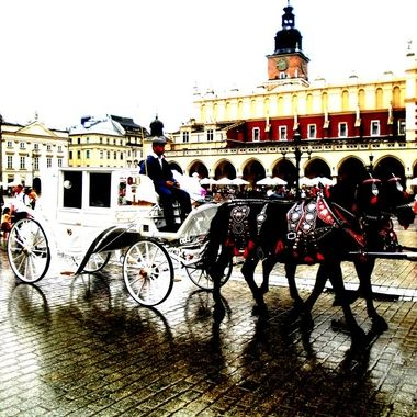 Architecture and life of Krakow - Beautiful city in Poland (45)