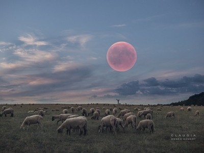 bloodmoon over the landscape July 2018