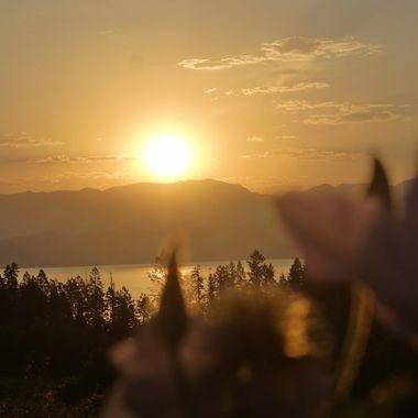 Blurred Sunrise
