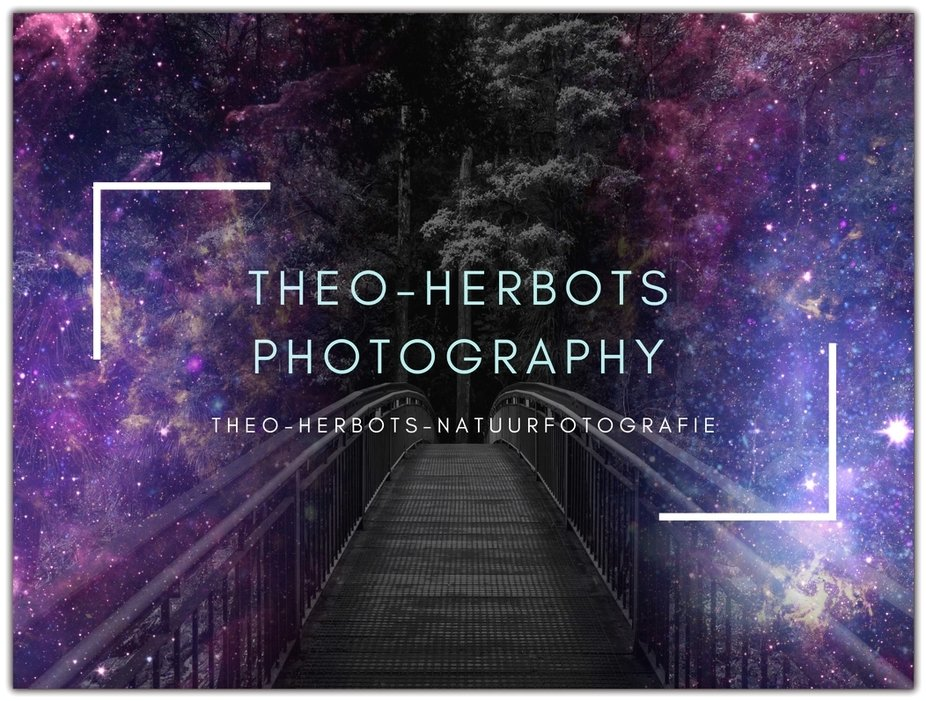"""With this photo I want to participate in the competition """"Bridges in the night"""" Sincerely Theo Herbots"""