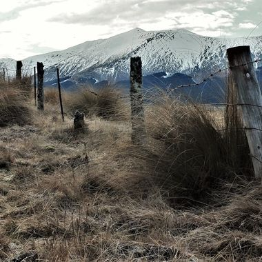 Tussock Country