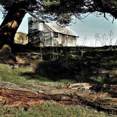 Shepherds hut built circa 1900 on Mount Nicholas station.