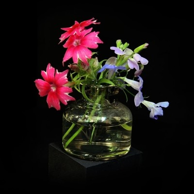 Composition with flowers. Macro. Photo 8.