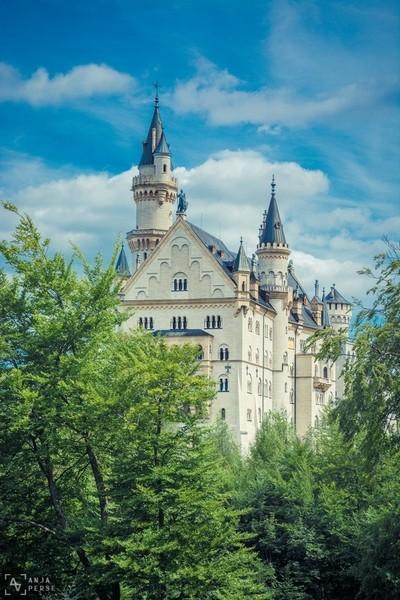 Neuschweinstein castle behind the trees