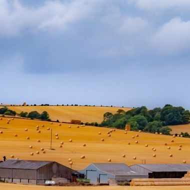 Farm near Bratton - in colour