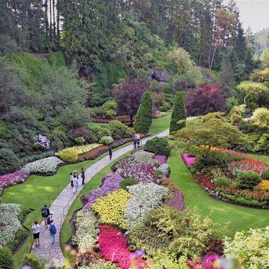 Butchart Gardens (3) - Victoria, British Columbia, Canadat