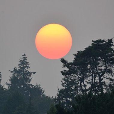 Smoke and the sunset