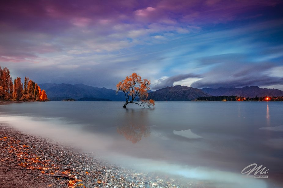 Long exposure of That Wanaka Tree in New Zealand