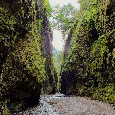 Not that you do but if you need an excuse to take a roadtrip to Oregon Onenota Gorge was all I needed.  #love #hiking #RoamThePlanet #planetwanderlust #adventure  #discoverylandscape #global_hotshotz #getoutside  #wonderwandertravel #inspiredtravels #inst