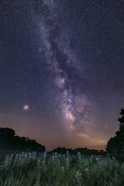 Milky Way Meadow