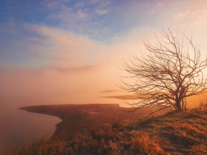 Foggy-Morning by tracymunson - Monthly Pro Photo Contest Vol 44