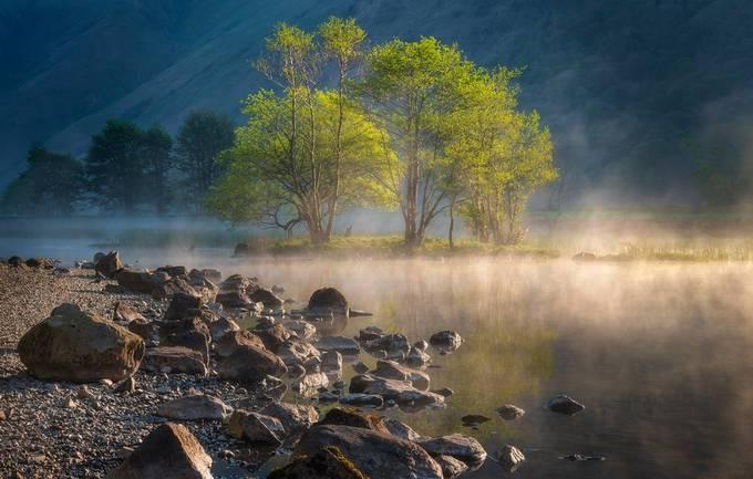 Illumination by Pete_Rowbottom - Celebrating Nature Photo Contest Vol 5