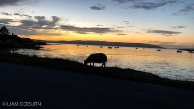 Sunset on Arran