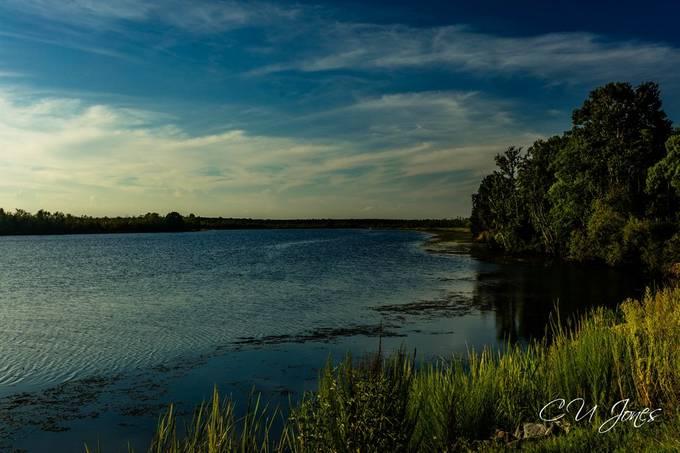 Sunset at Bushy Park boat landing in Goose Creek, SC