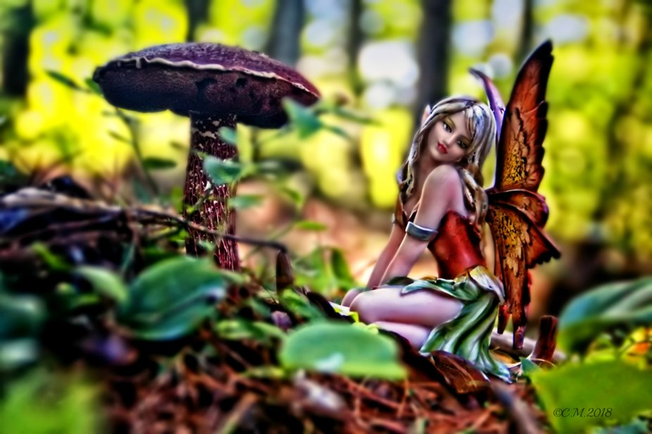 Shot of a fairy near a large mushroom.