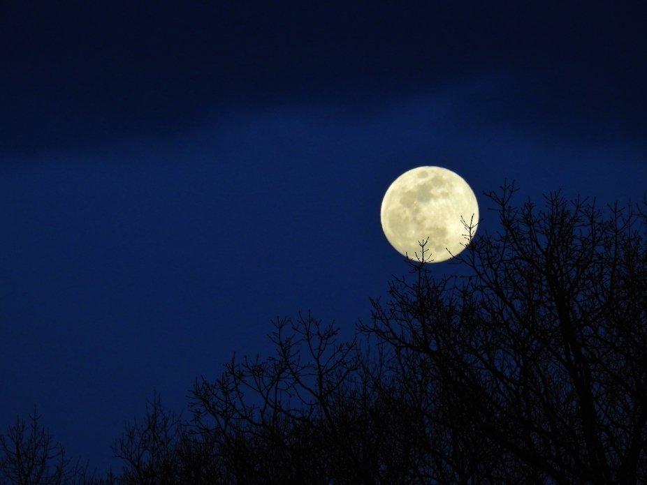 big moon in a blue sky