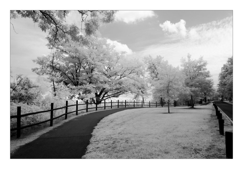 This is an Infrared photography, taken with a Canon rebel EOS t5i, converted to IR.  For me the a...