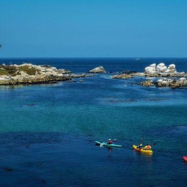 Cal_Coast_2018-707